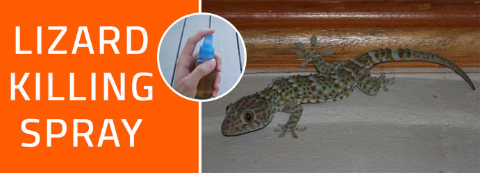 Lizard Killing Spray Melbourne
