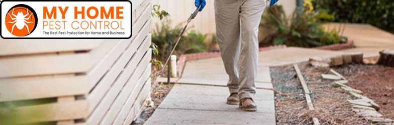 Pest Control North Perth