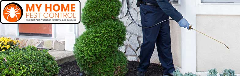 Professional Pest Control North Perth