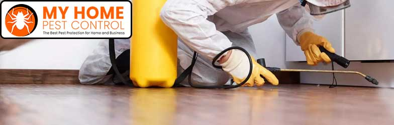 RESIDENTIAL AND COMMERCIAL PEST CONTROL Morts Estate